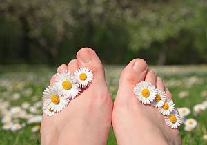 Body Quotes - Daisy Toes in a Field
